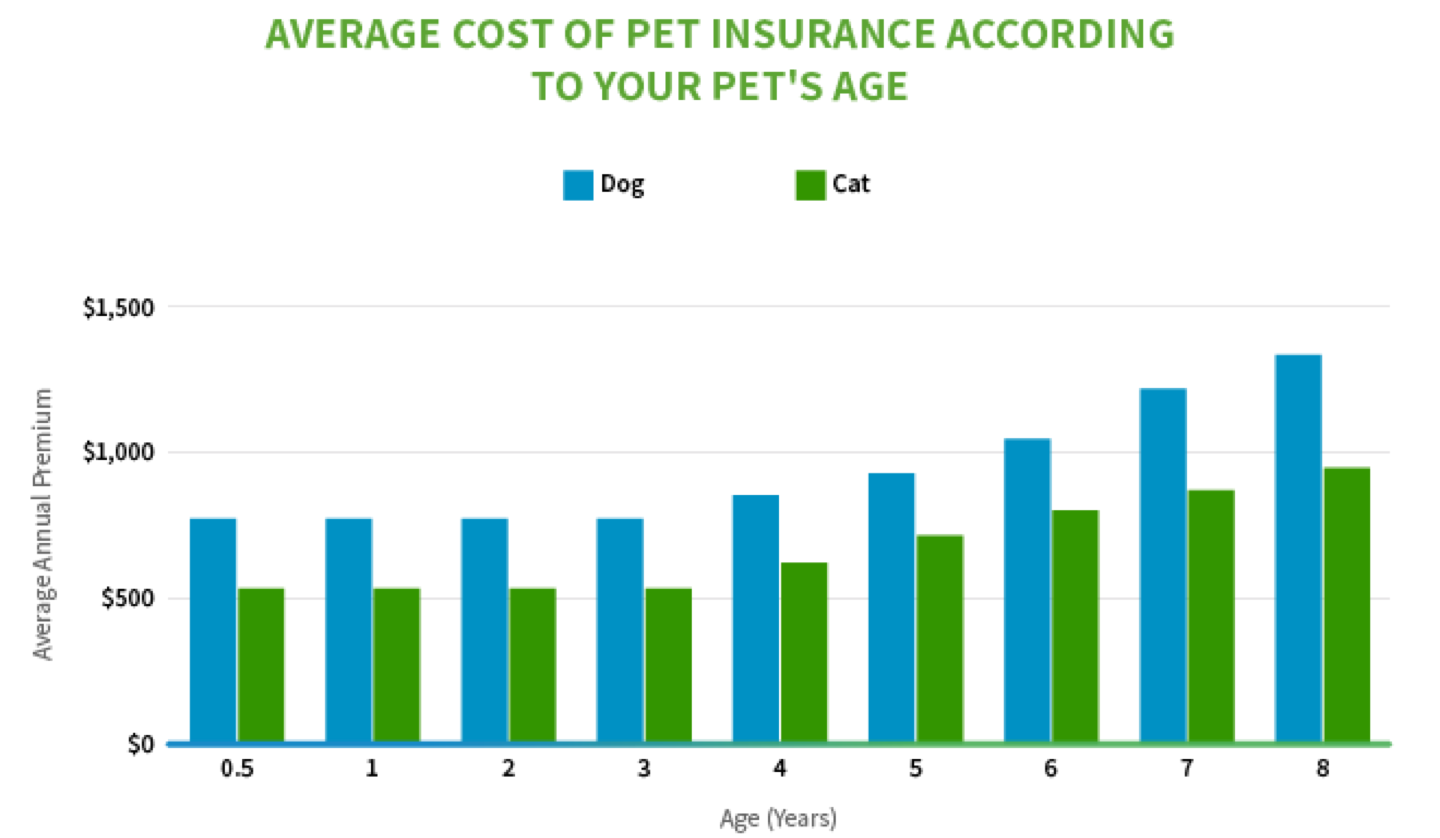 Average cost of pet insurance according to your pet's age