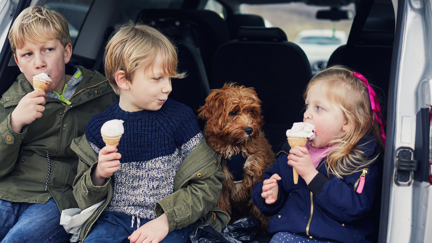 dog-and-kids-in-the-car