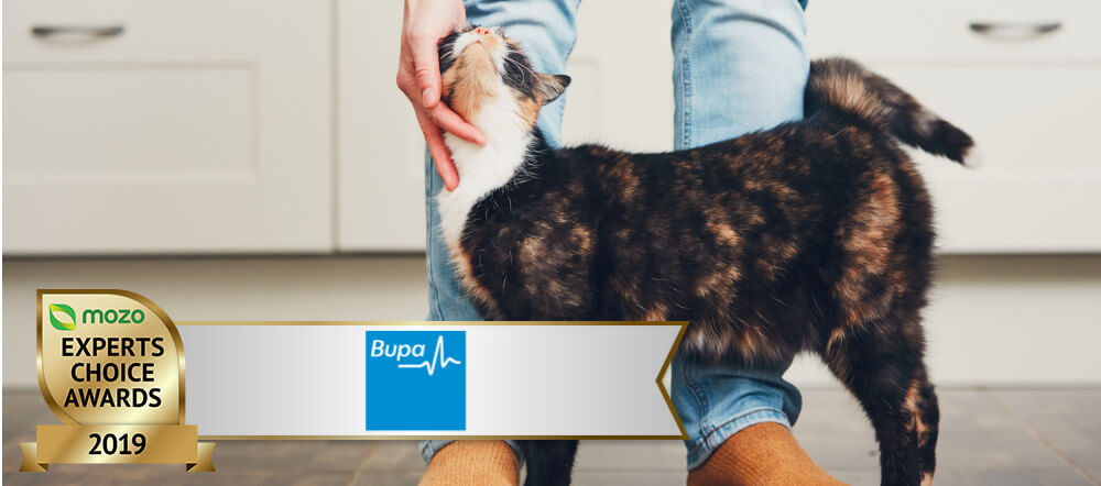 Bupa award-winning pet insurance | Mozo Experts Choice ...