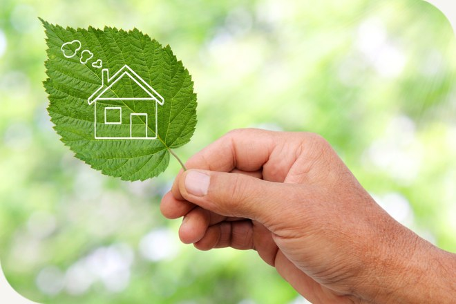 5 Top Tips for Sustainable Living