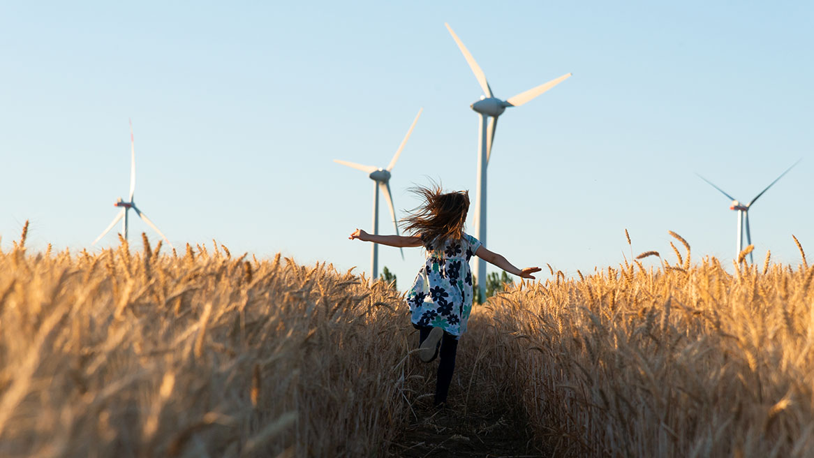 Everything you've ever wanted to know about wind energy